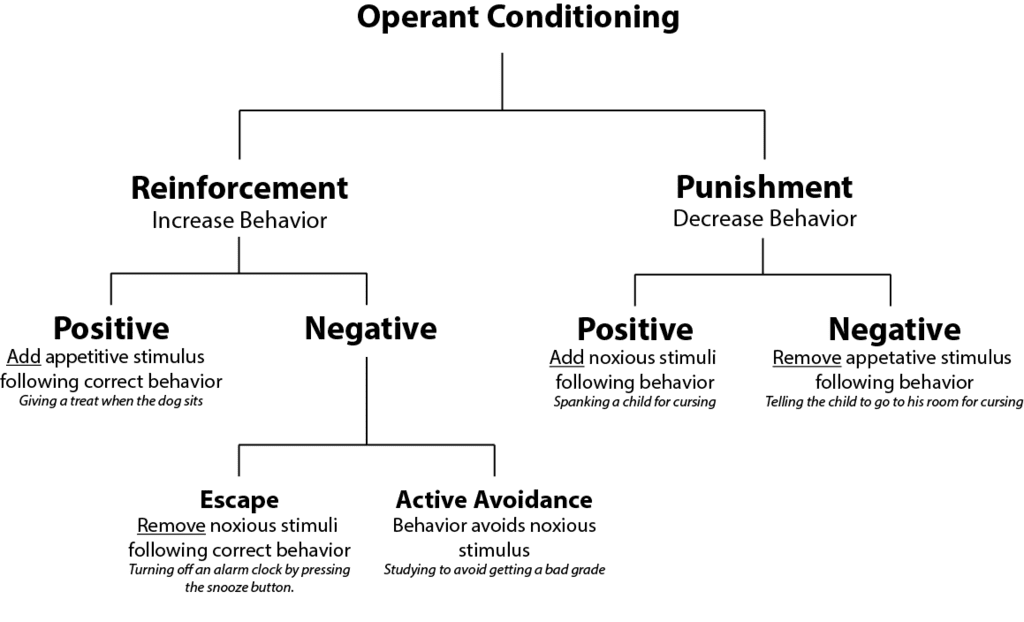 operant conditioning diagram