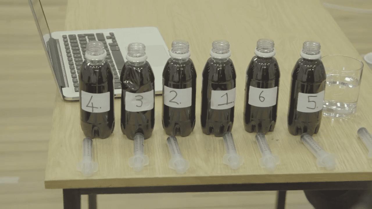 taste testing neuroscience