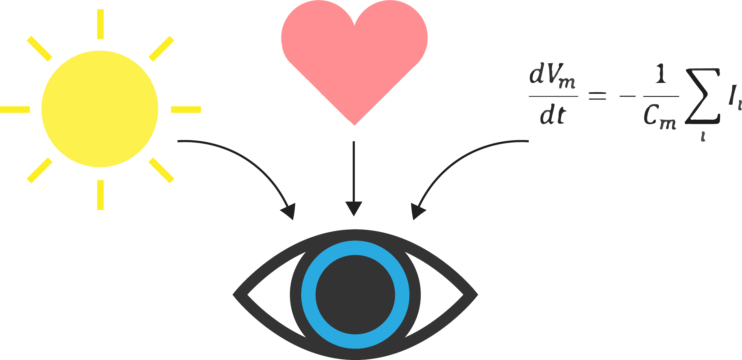 pupil dilation stimuli emotion