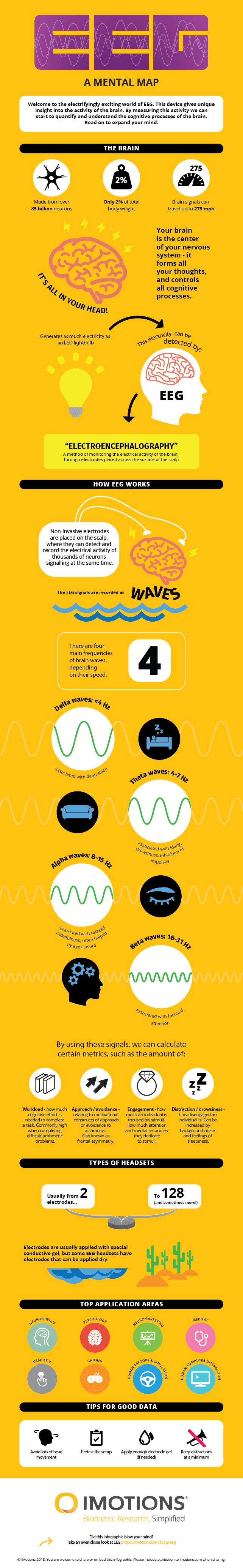 EEG infographic