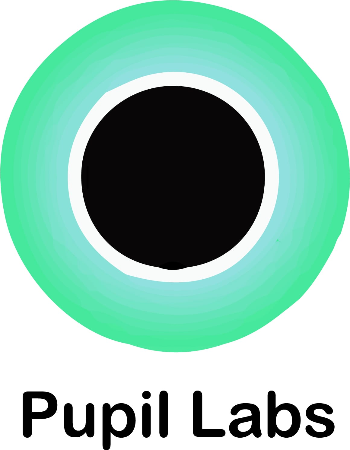 pupil labs eye tracking company