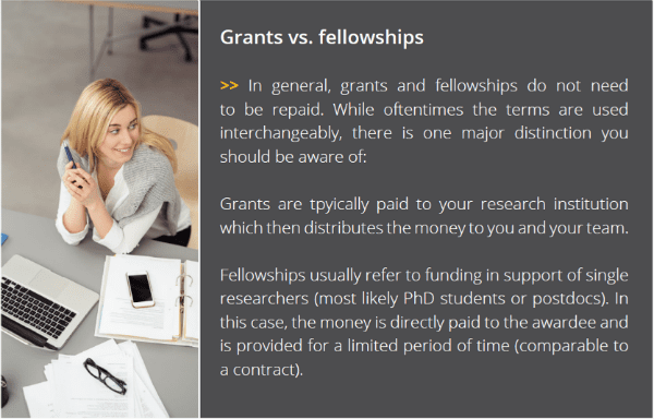 Grants vs. Fellowships