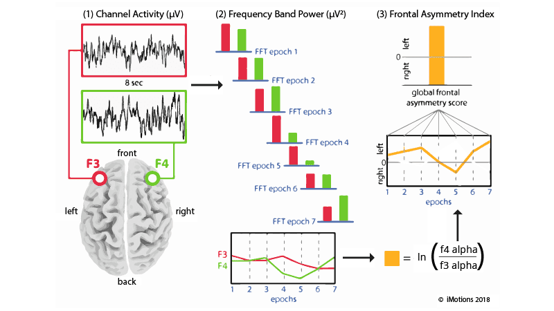 frontal asymmetry walkthrough