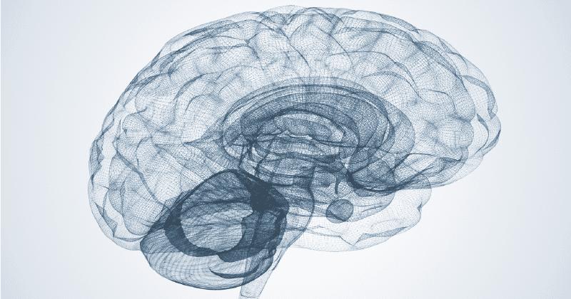 brain eeg scan frontal asymmetry