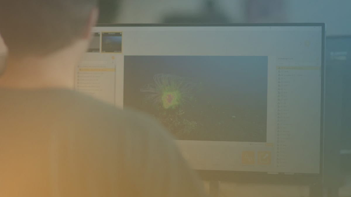 Photo with filter Participant looking at a screen displaying a heat map