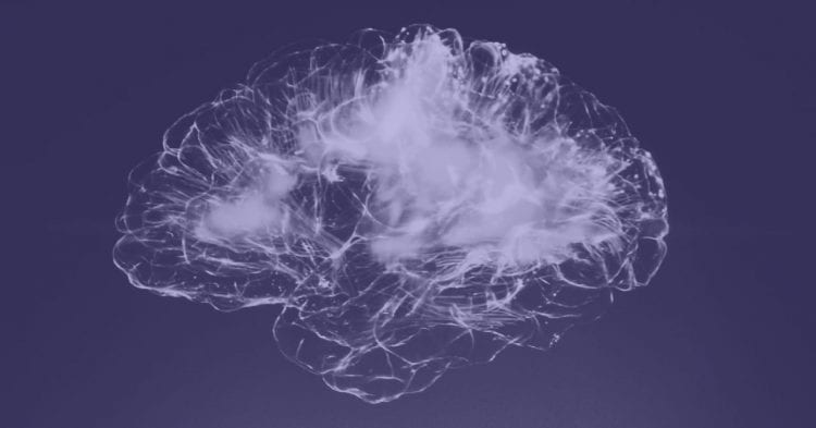 Image of brain with purple background