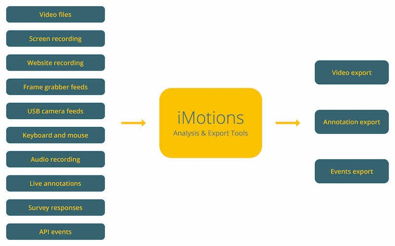 input feeds into iMotions api